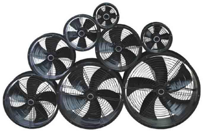 Cased Axilia Fan Range